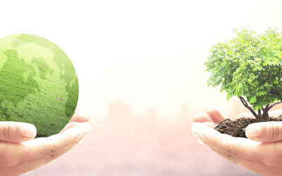 Why on Earth do you need an Environmental Management System?